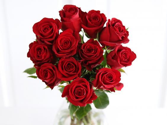 Kiwanis Rose Day