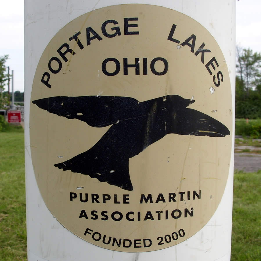 PLX Purple Martins in 2020!